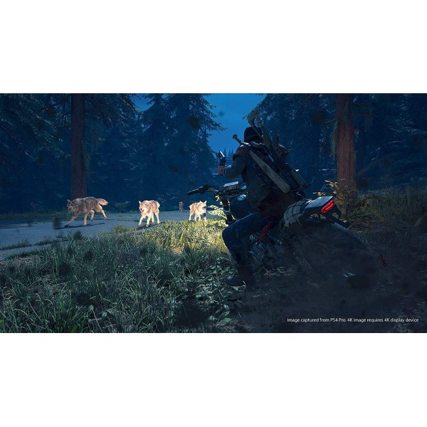 Days Gone (Collector's Edition)